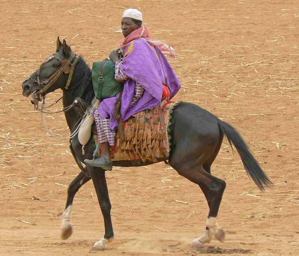 Dogon Rider