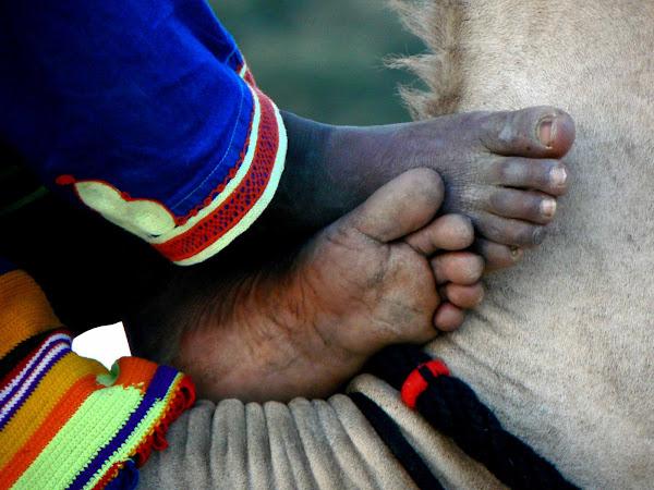 Camel Riders Feet