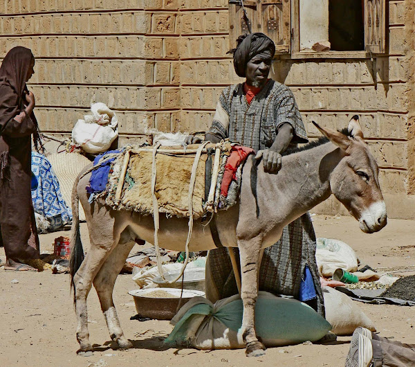 Baggage Donkey