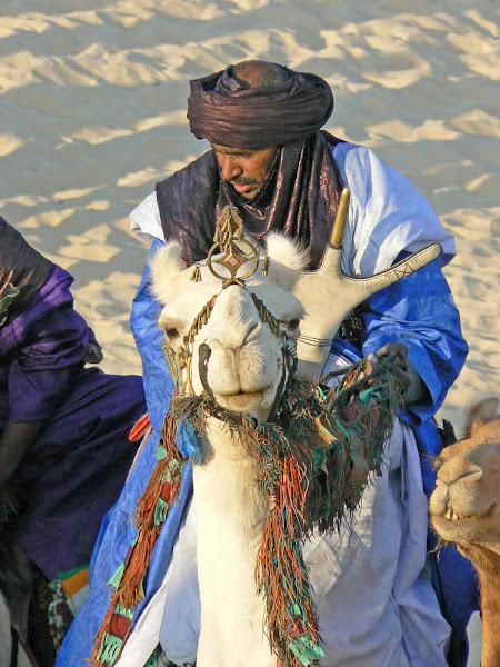 Splendid Tuareg Camel Rider
