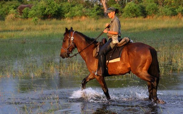 Riding in the Okavango Delta 2008