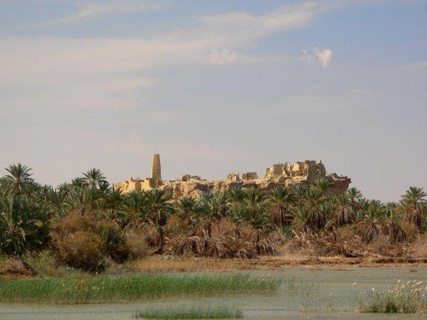 [3588157-siwa-oasis-fort-0.jpg]