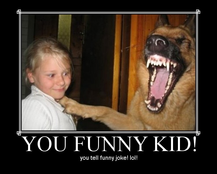 stupid funny jokes. jokes