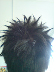 My fashion hair