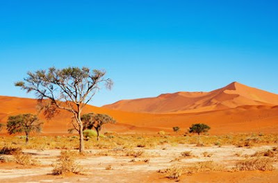 ancient civilisations of the kalahari desert