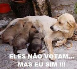 Vote com responsabilidade!