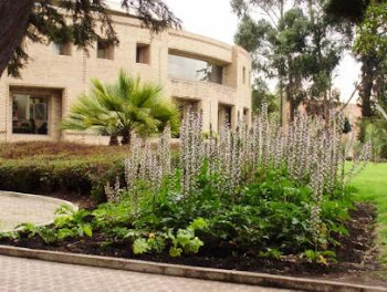 Universidad Nacional de Colombia Sede Bogotá - Edificio Rogelio Salmona