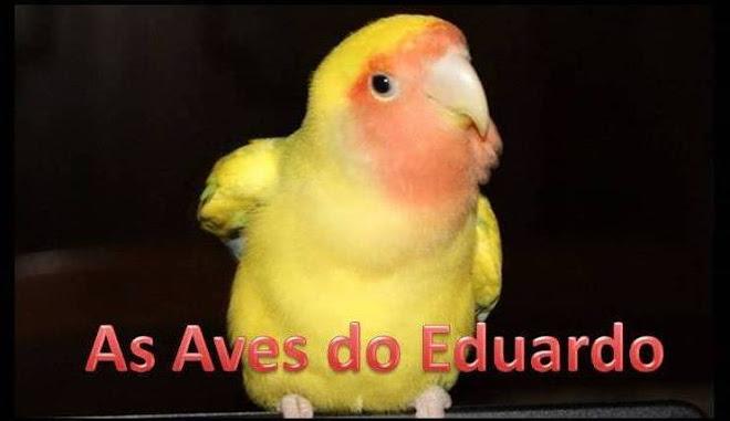 As Aves do Eduardo