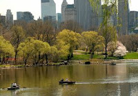 A Walk in New York's Central Park: A Feast for the Senses