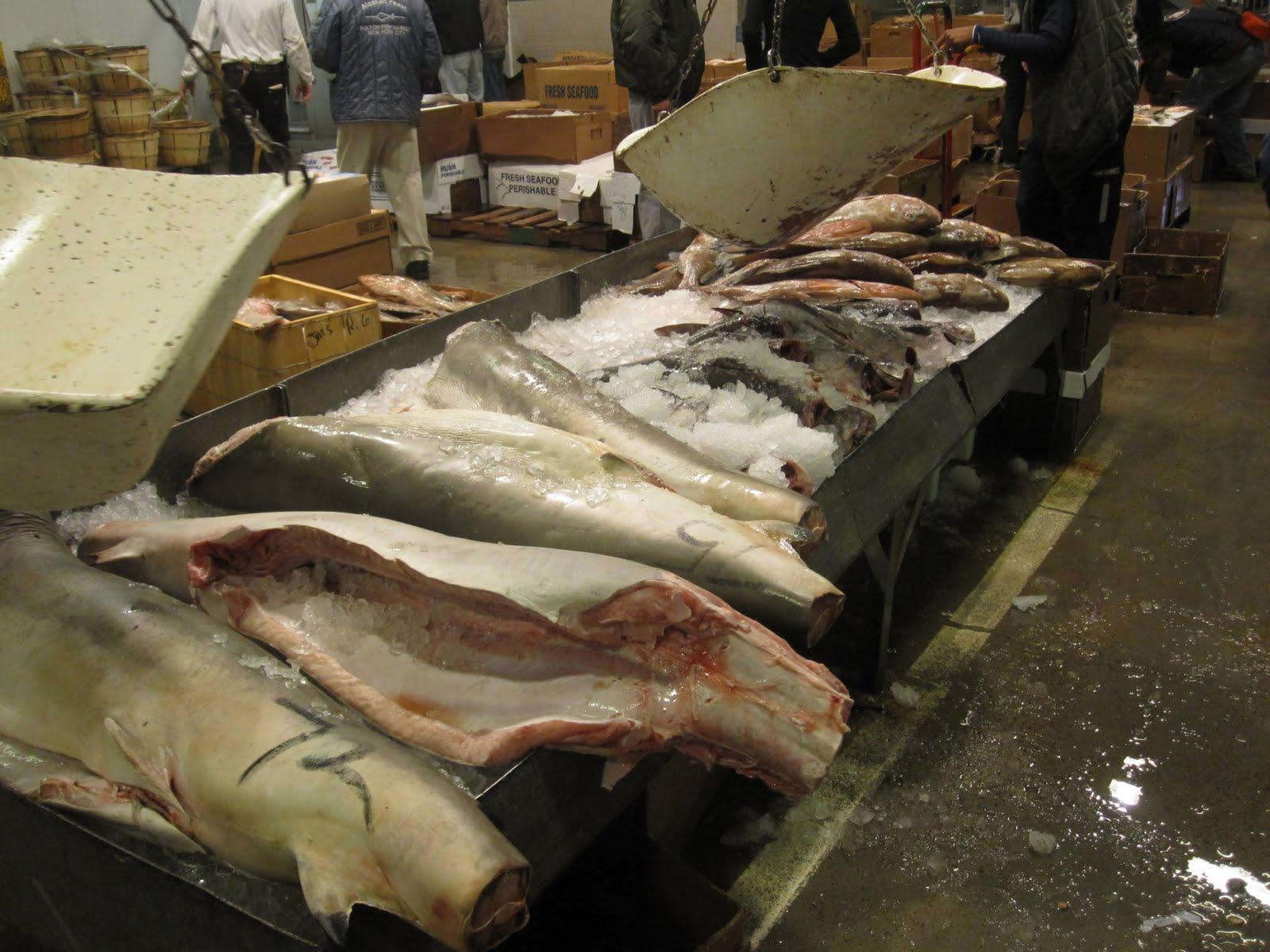 The tiffany blue chef the new fulton fish market hunts for New fulton fish market