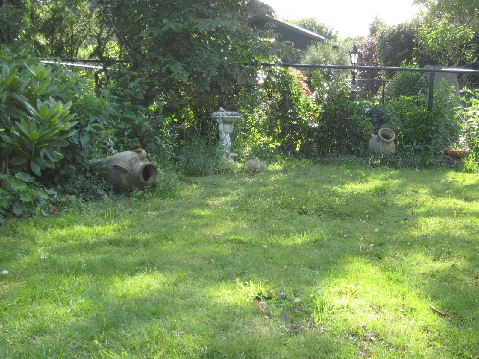 Tuinverslaving eef - Creeren van een tuin allee ...
