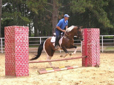 Hunter/Jumper Horse