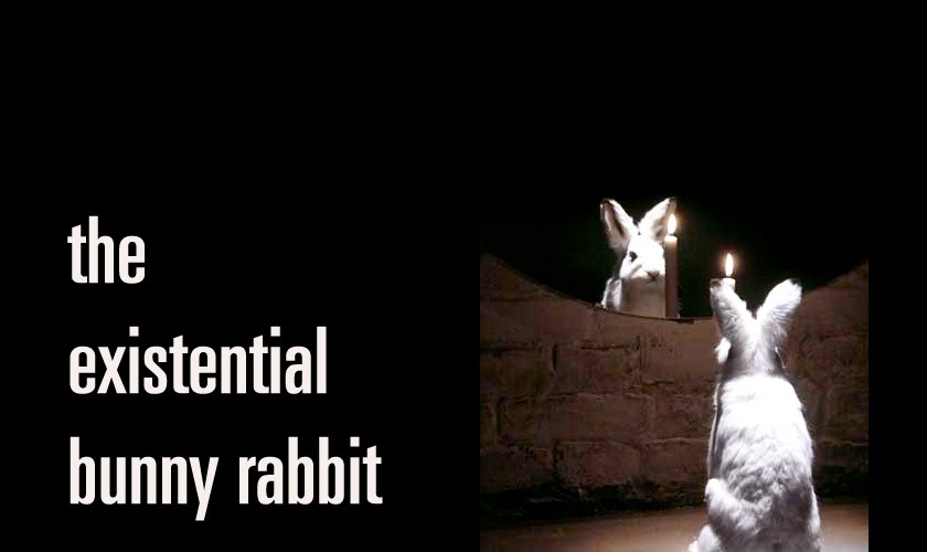 The Existential Bunny Rabbit