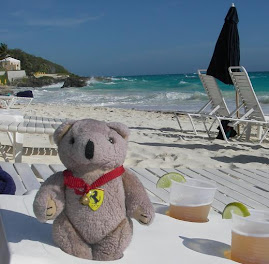 The travelling bear goes further than most - looking after the towels