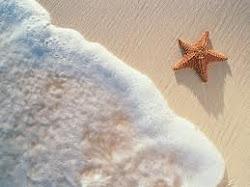 Estrella de mar ♫
