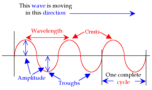 Two examples of a transverse wave