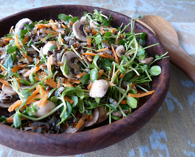 Sprout Salad with Wild Rice Carrot and Mushrooms