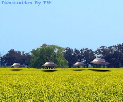Flying Saucers Over Canola Field in Langenburg