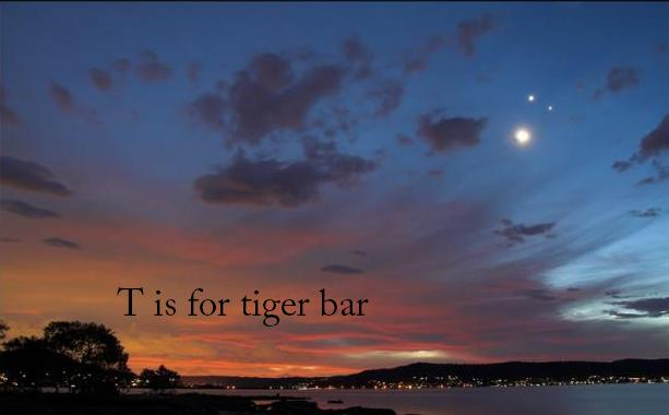 T is for tiger bar