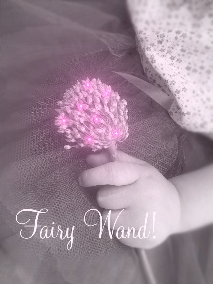 real pics of fairies. real fairy and fairy wand!