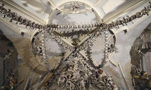 Clasificacion+de+los+huesos+humanos