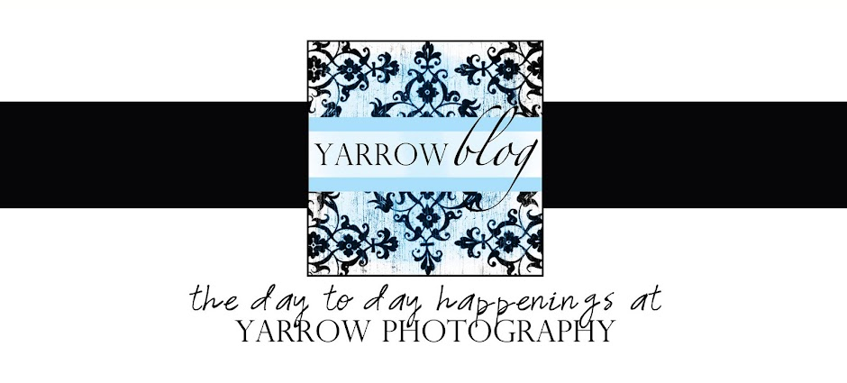 Yarrow Photography