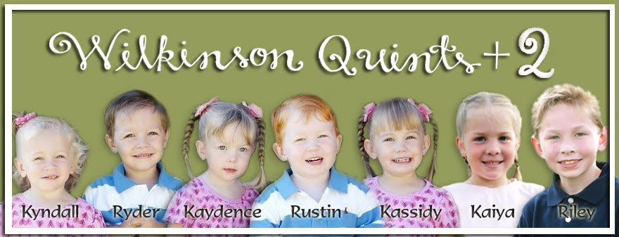 wilkinsonquints