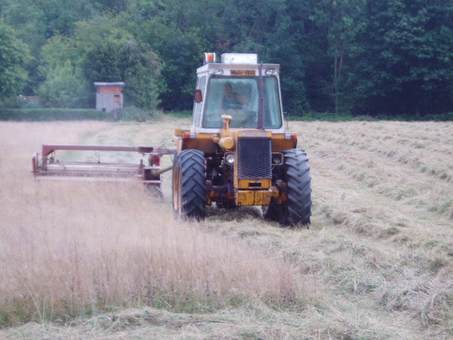 Cutting the hay 20 Aug 2010
