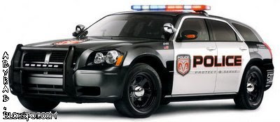 Michigan Police Car