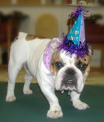 Atticus' 1st Birthday