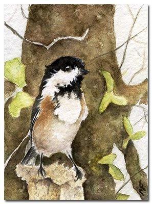 hummingbird watercolour painting