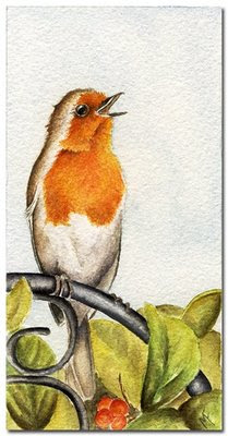 robin watercolour painting