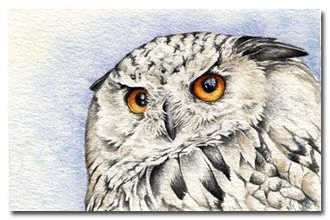 chickadee watercolour painting