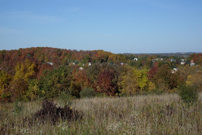 view east from Thayer Hill, along Crescent Trail, Town of Perinton NY