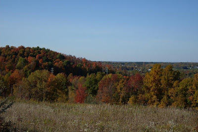view from Thayer Hill, along Crescent Trail, Town of Perinton NY