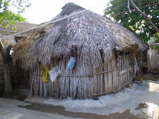 Apicultores Mayas del siglo XXI