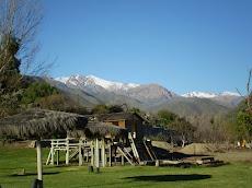El paisaje de Monte Patria dio un entorno natural al encuentro de la red apícola de Chile
