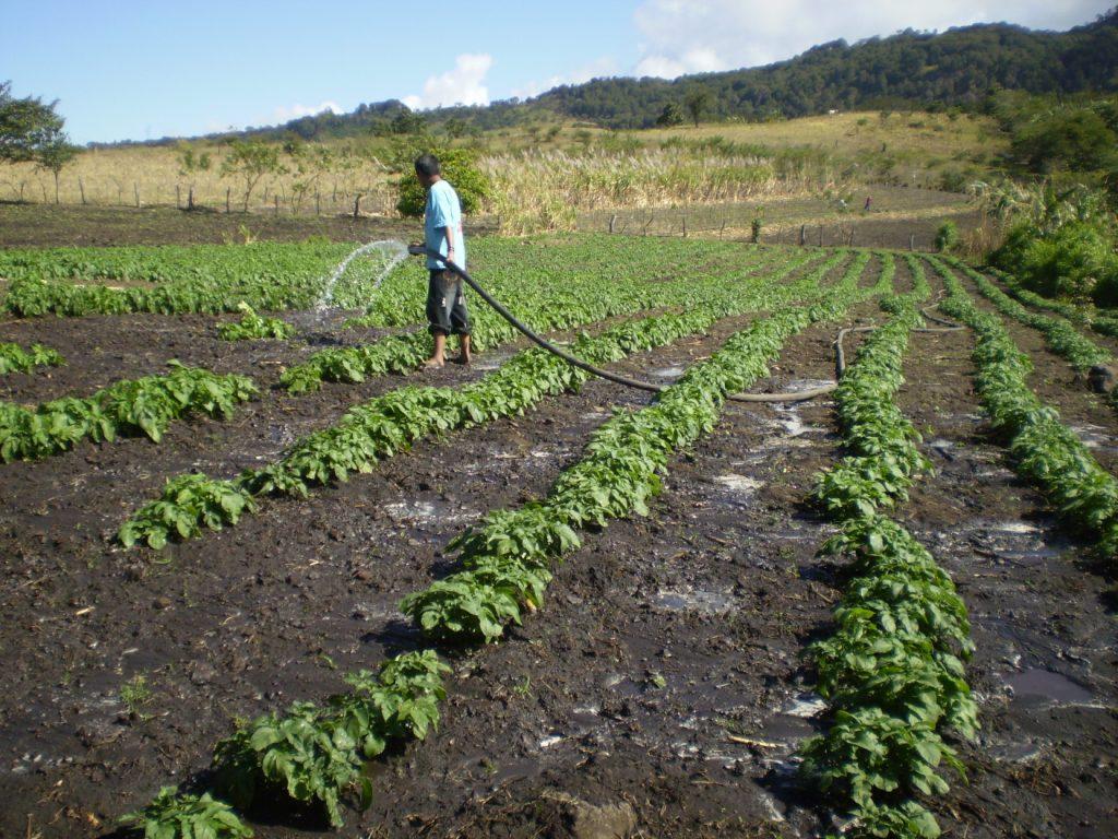 El suelo usos del suelo for 4 usos del suelo en colombia