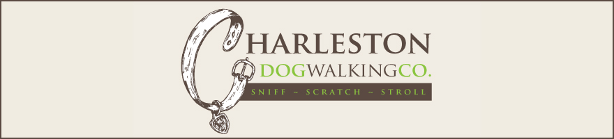 Charleston Dog Walking Co.