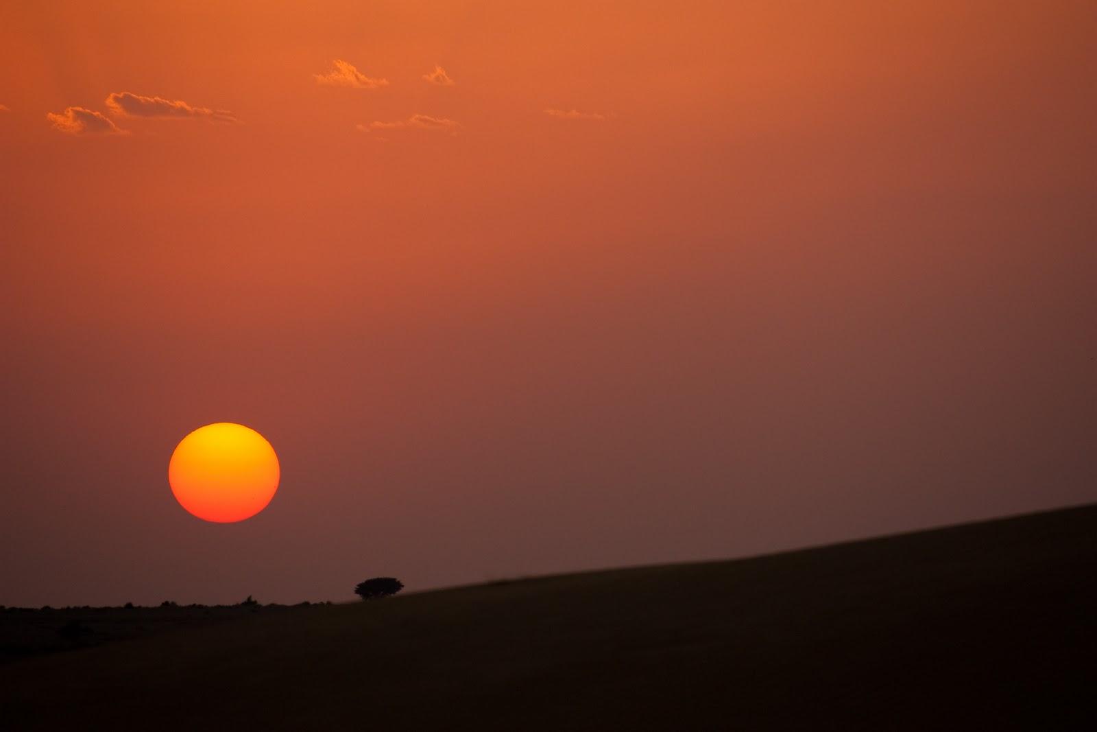 top thar desert sunset -#main