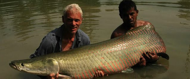 ~WeLcOmE tO mY ReaL WorLd~: Guideline River Monsters ...
