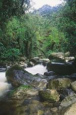Cuenca Hidragráfica Peruana