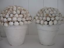Wit gekalkte hazelnoten