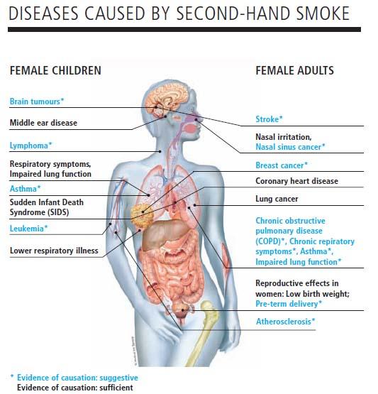 S lo un sorbo de esta bebida ayuda a dejar de fumar con - Como quitar el olor a tabaco ...
