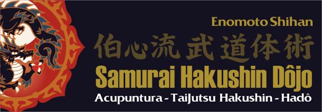 Instituto Samurai