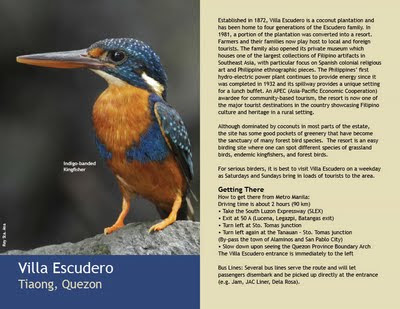 Travel central philippines birdwatching in the Villa escudero quezon province