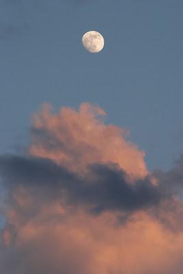 Daubmir's Moon