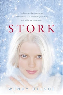 Review: Stork by Wendy Delsol