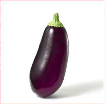 Photo aubergine eggplant