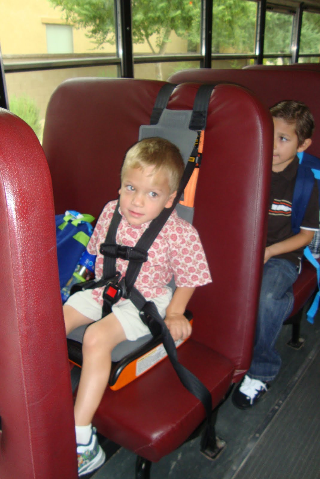 The Gallery For Gt School Bus Seat With Harness